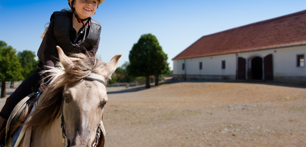 Hippotherapy Seen in Small Study to Only Aid Mobility in Children with Cerebral Palsy